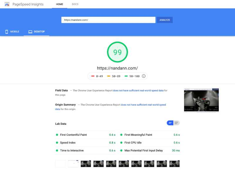 Nandann Google Pagespeed score 99